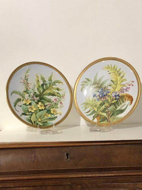 Porcellana Piatti